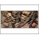 Pozadie AQUA EXCELENT Root 120 x 50 cm (1ks)