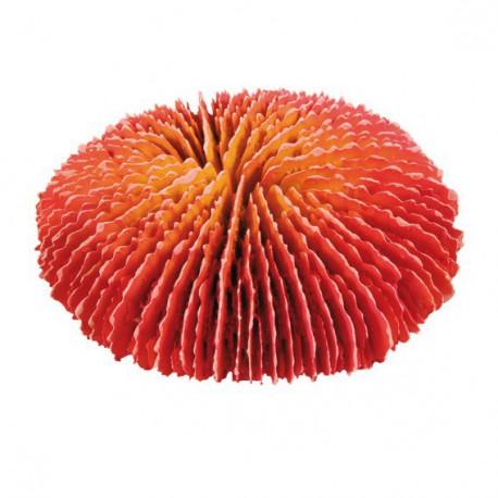 TRIXIE set korálov 4 druhy