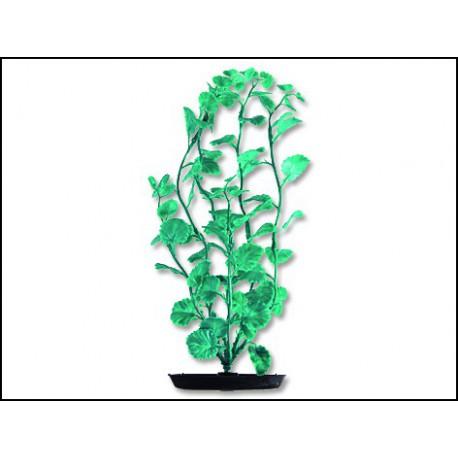 MARINA Cardamine zelená 20 cm