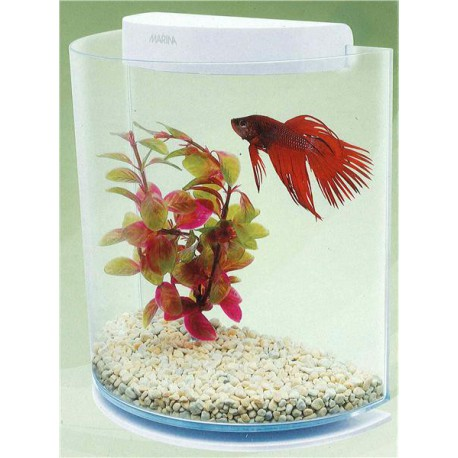 Marina Betta Kit HalfMoon 3 L