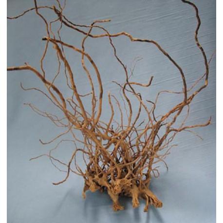 Dekoračný koreň FINGER wood - veľký