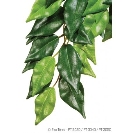 Exo Terra Ficus rastlina stredná 55 cm