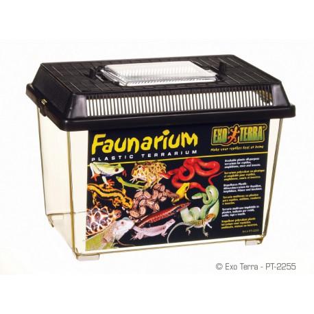 Exo-Terra Faunarium malé