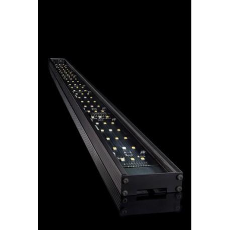 Giesemann Pulzar LED - marine - 470 mm 18W