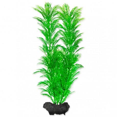 Tetra Green Cabomba S