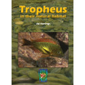 Tropheus in their natural habitat, Ad Konings