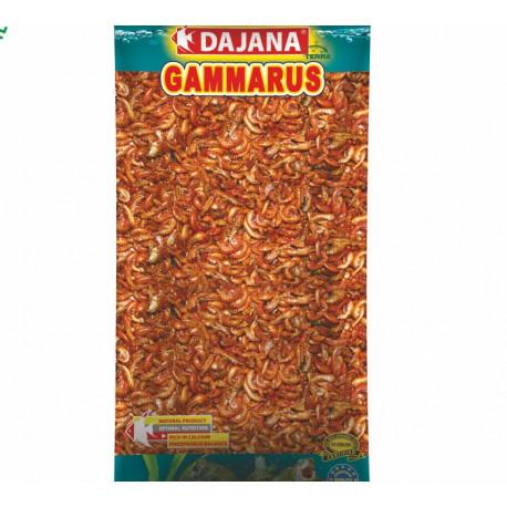 Dajana Gammarus sačok 500ml/60g