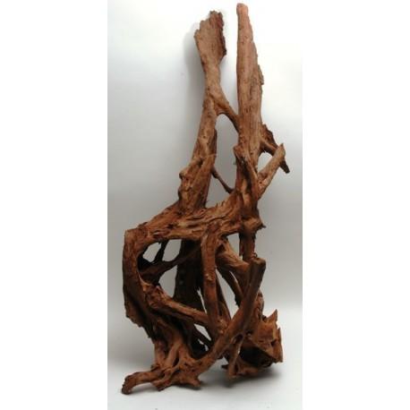 Mangrove koreň 35-65cm
