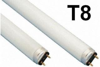 Žiarivky T8