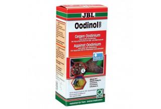 Liečivá a vitamíny pre akváriové rybičky