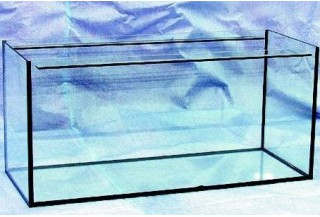 Ante akvárium