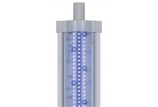 Aquatlantis LED