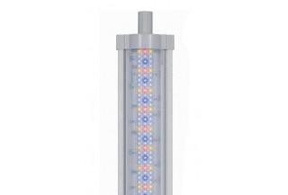 Aquatlantis Easy LED Universal Freshwater
