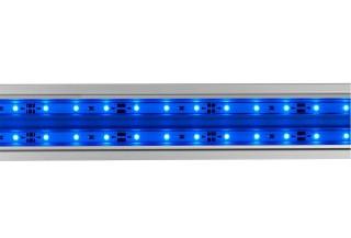 Eheim powerLED actinic blue