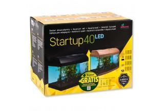 Diversa Startup s LED osvetlením