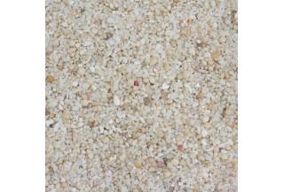 Korálové piesky