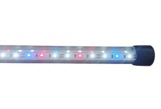 cF LED osvetlenia