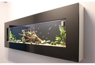 Živý obraz akvárium