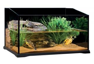 AkvaTerárium pre vodné korytnačky