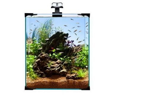 DIVERSA nano akvárium